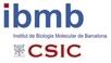 IBMB - Institut de Biologia Molecular de Barcelona